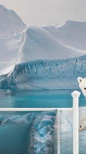 Winter Wonderland Theme Bedroom Ideas Arctic Animals